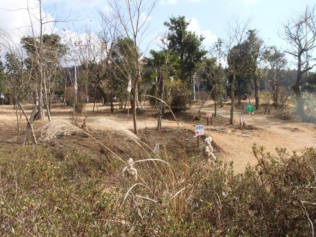20120202_golf
