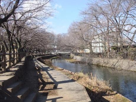 20120209_wakaizumi_park3