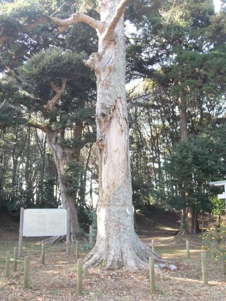 20120220_naruto_jyouseki_park5