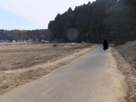 20120229_road02