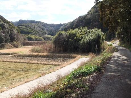 20120306_road