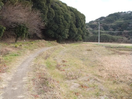 20120309_road03