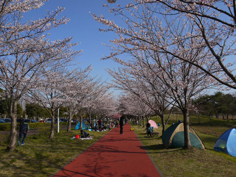20120410_misato_park09