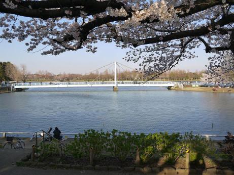 20120411_mizumoto_park02