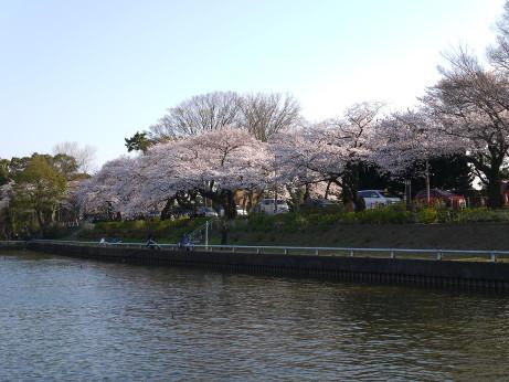 20120411_mizumoto_park04