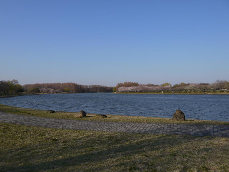20120411_mizumoto_park05