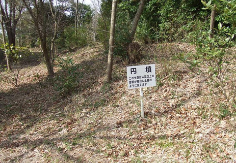 20100326_enfun2