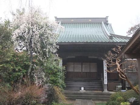 20120426_seijyouji