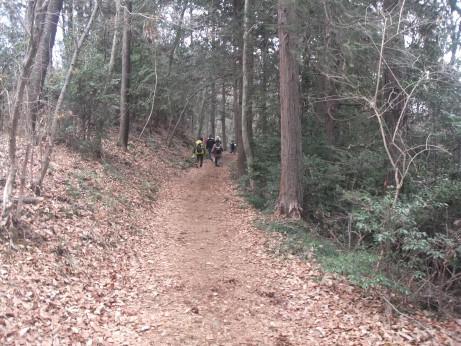 20120429_okumusashi3
