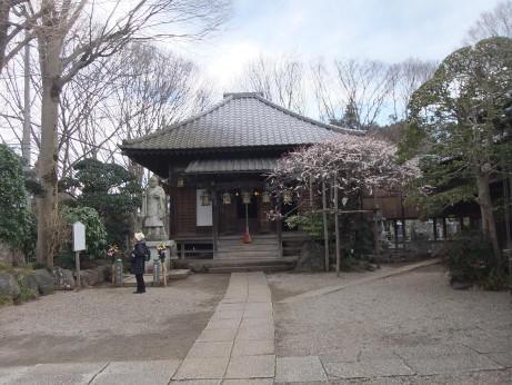 20120512_kannonji