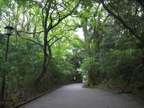 20120516_road2
