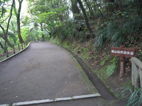 20120516_road3