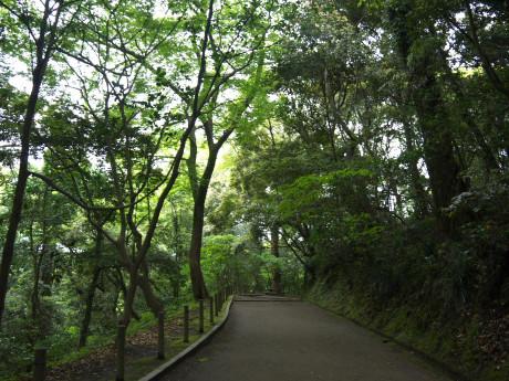 20120516_road4