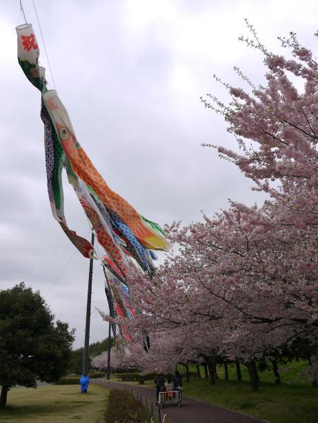 20120530_oyama_park1