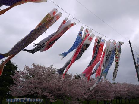 20120530_oyama_park2