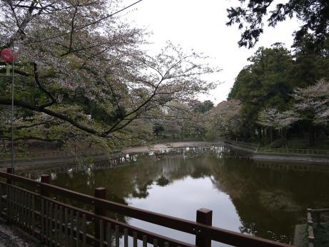 20120531_mamada_park1