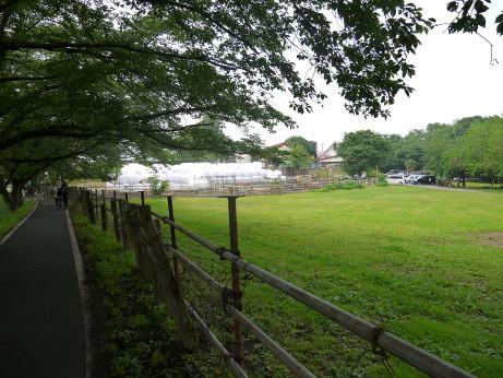 20120607_enomoto_farm2