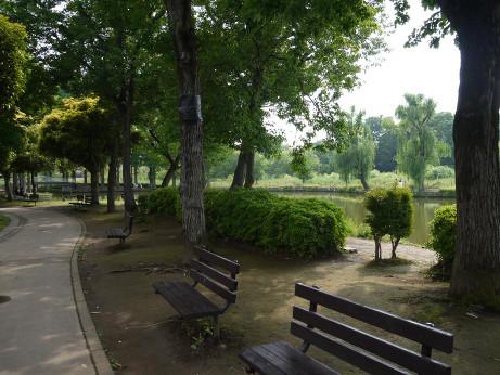 20120608_maruyama_park3