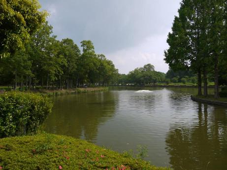 20120608_maruyama_park4