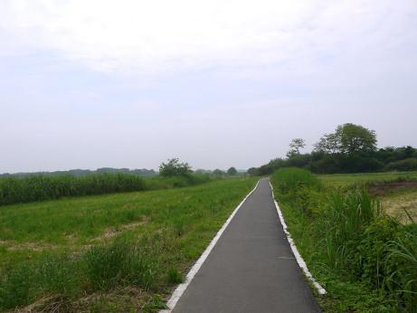 20120702_road_04