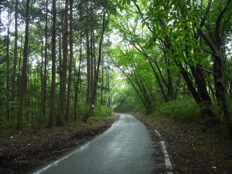 20120708_road03