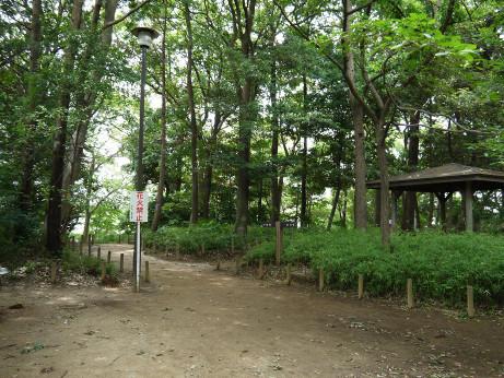 20120710_ooyaguchi_rekishi_park03