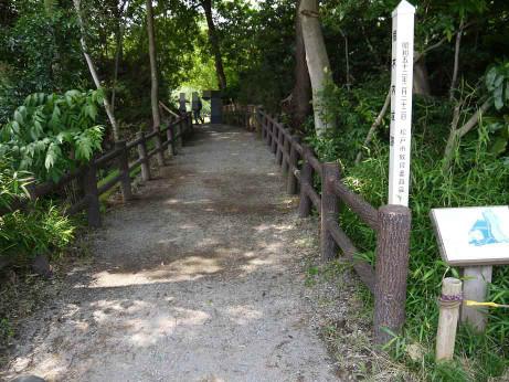 20120711_negiuchi_rekishi_park02