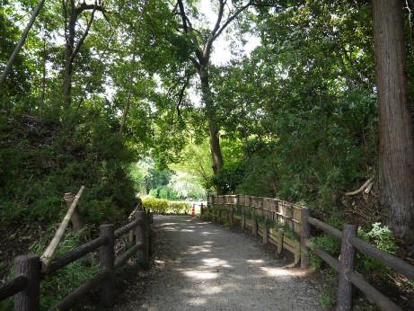 20120711_negiuchi_rekishi_park03