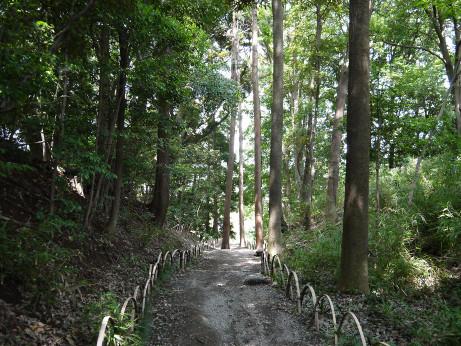 20120711_negiuchi_rekishi_park06