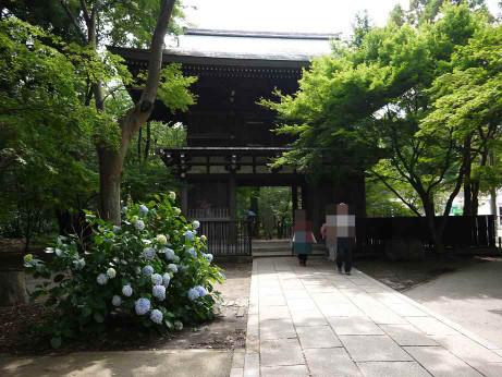 20120715_touzenji1