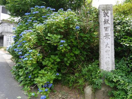 20120718_ibaraki_hyakkei