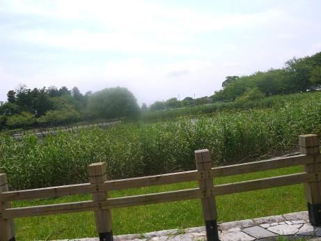 20120720_kanouen2