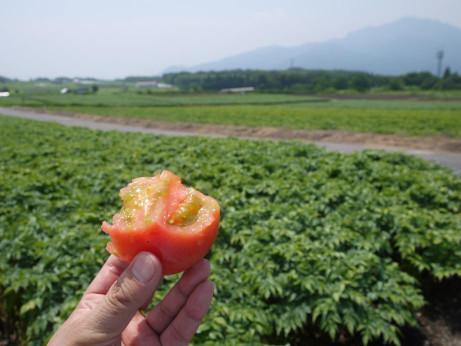 20120810_marukajiri
