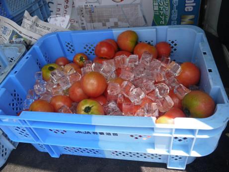 20120810_tomato