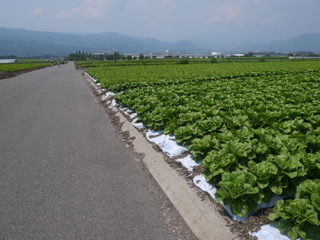20120811_azemichi2