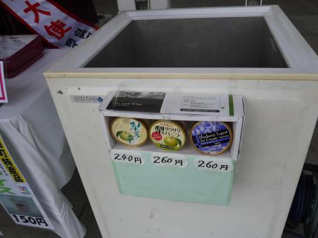20120912_ice1