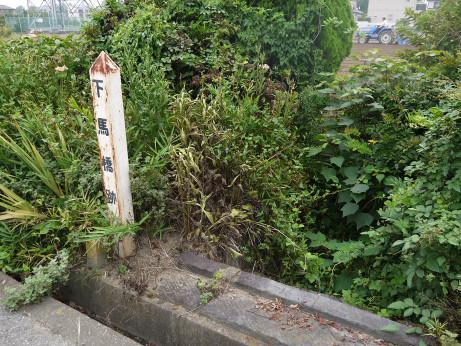 20120919_shimobabaato