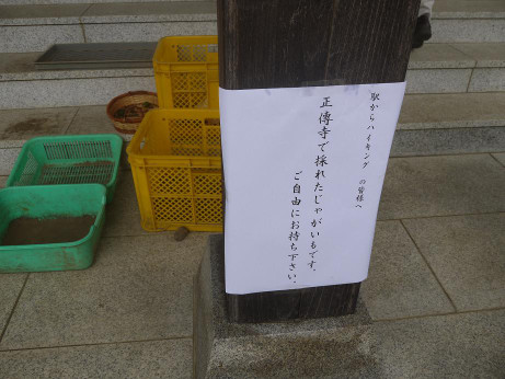 20120922_syoudenji2