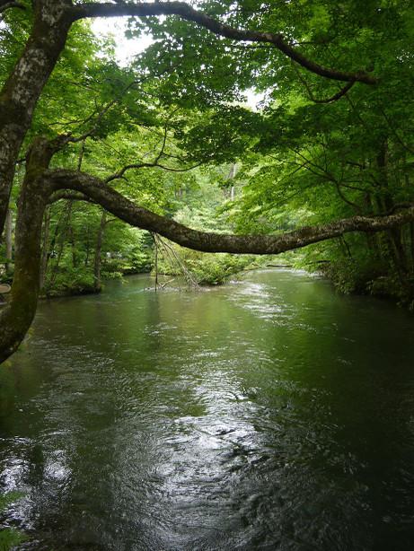20120930_oirasegawa02