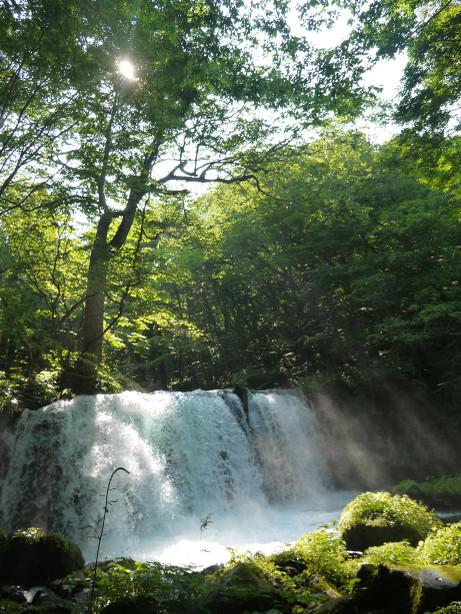 20121007_cyousi_ootaki2