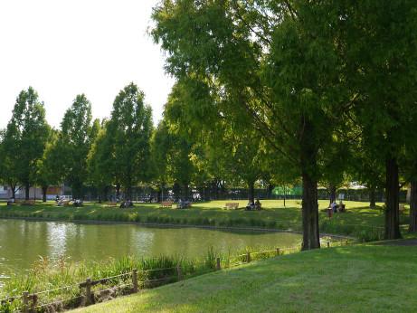 20121017_lake3