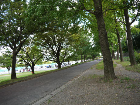 20121020_suijyou_park1