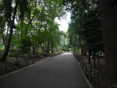 20121024_park02