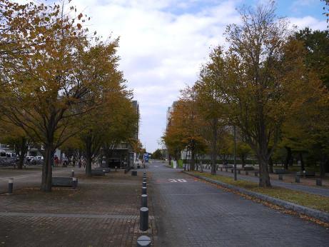 20121028_kounai1