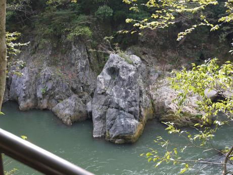 20121111_goriraiwa