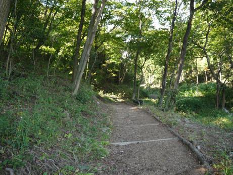 20121112_foot_path1