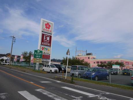 20121112_sakura_moll