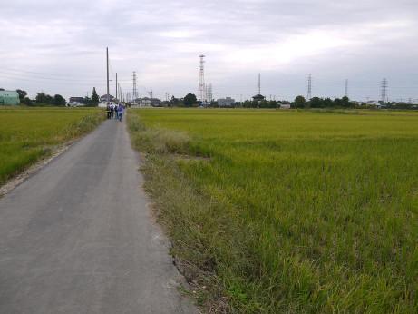 20121117_road01