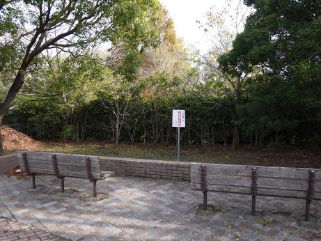 20121128_kandori_park_4