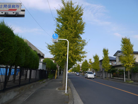 20121129_road03